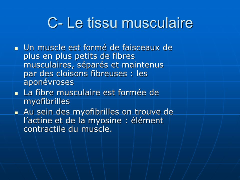 C- Le tissu musculaire