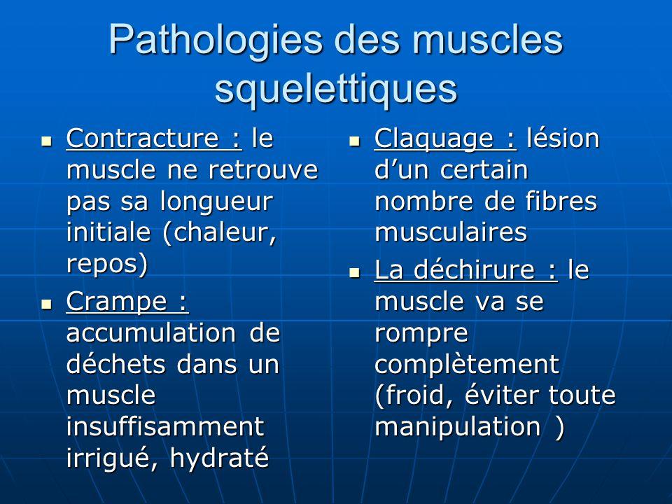 Pathologies des muscles squelettiques