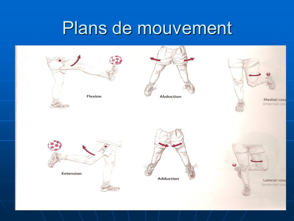 Plans de mouvement