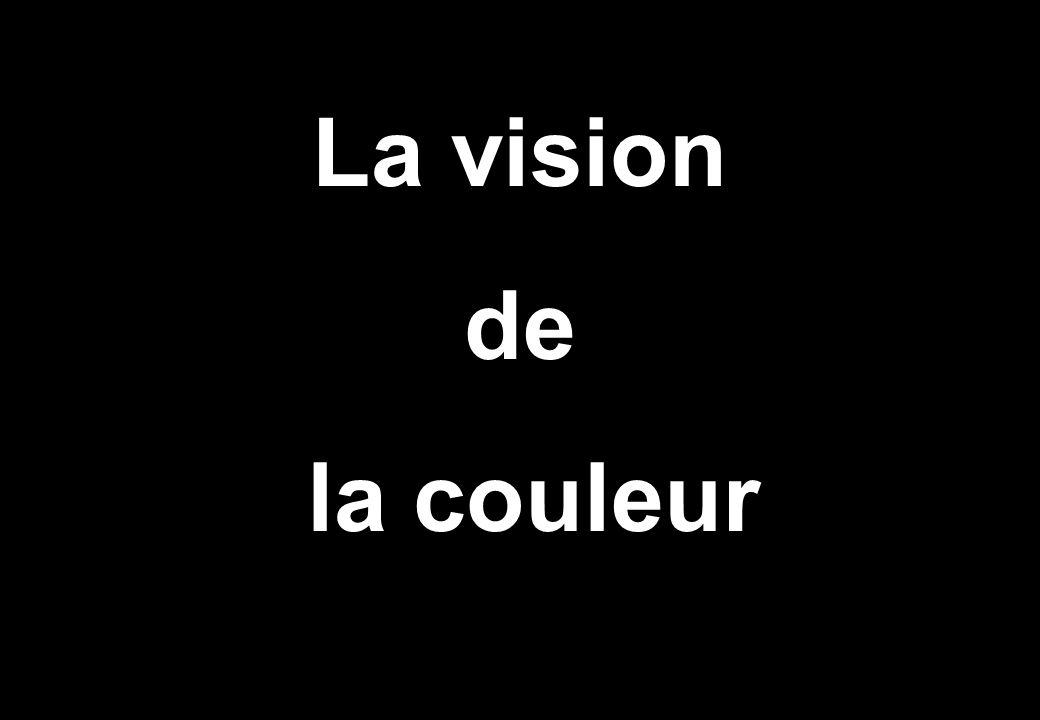 La vision de la couleur