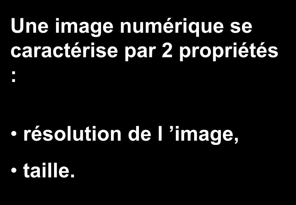 Une image numérique se caractérise par 2 propriétés :