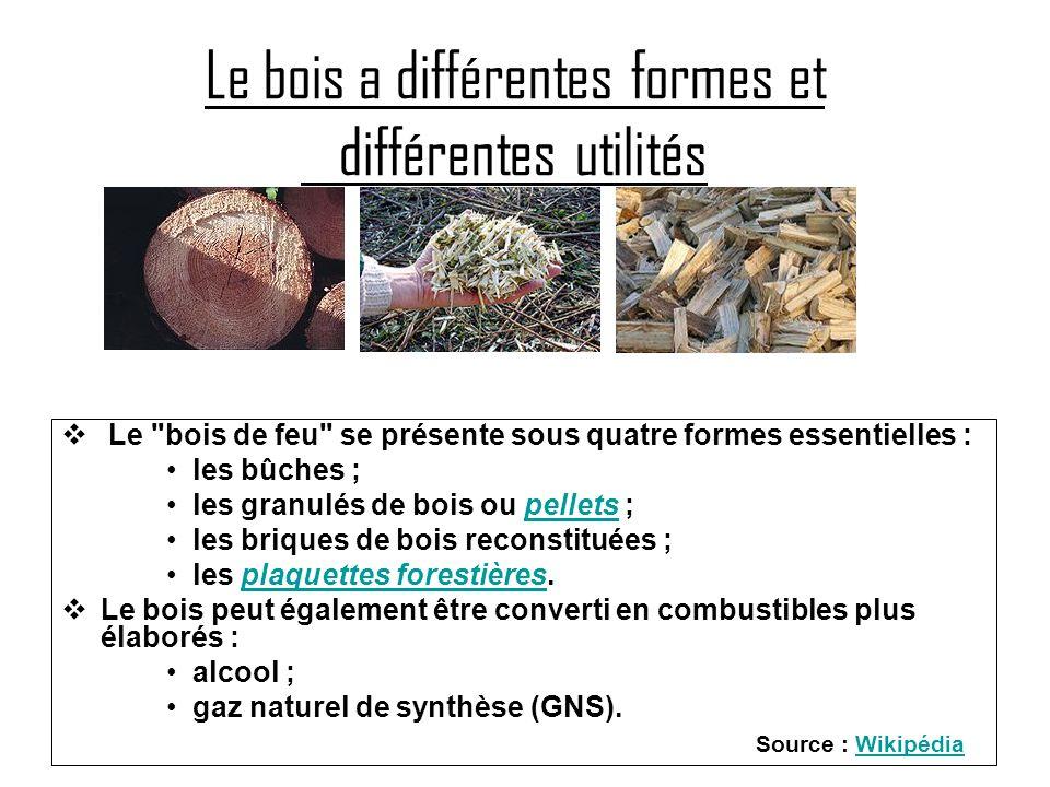 Le bois a différentes formes et différentes utilités