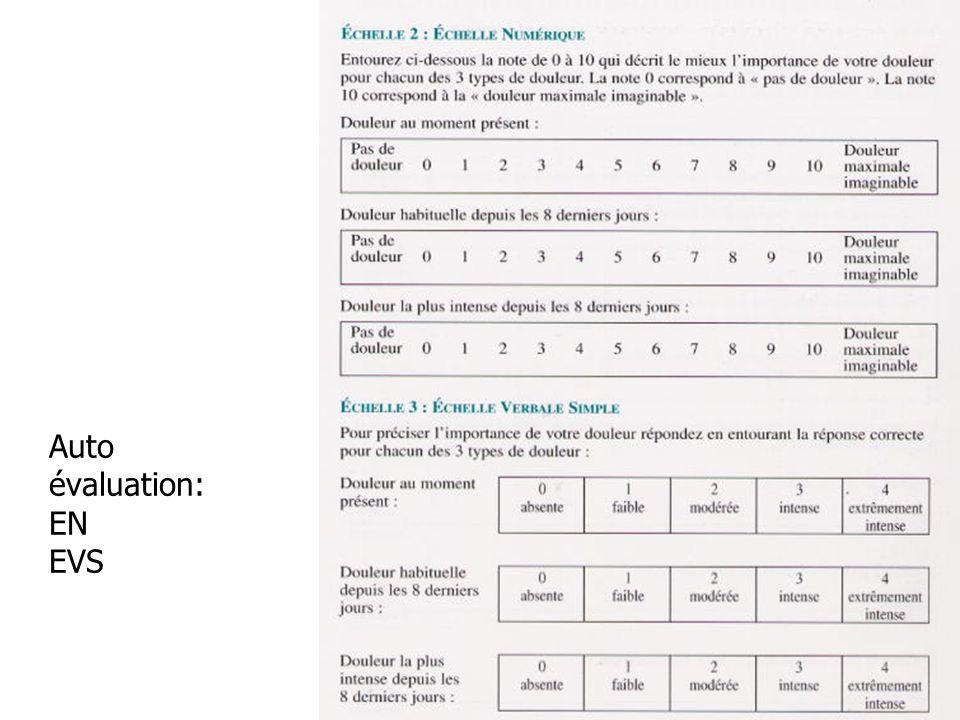 Auto évaluation: EN EVS