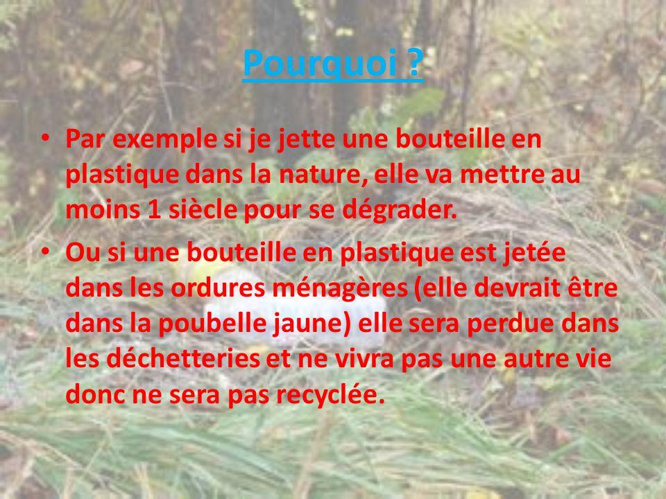 Pourquoi Par exemple si je jette une bouteille en plastique dans la nature, elle va mettre au moins 1 siècle pour se dégrader.