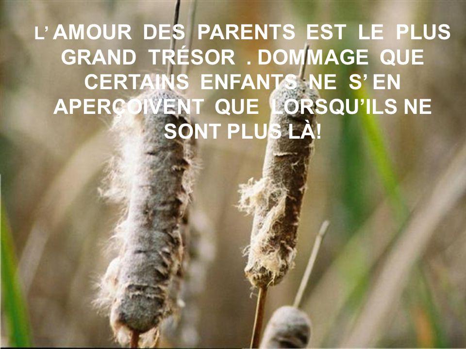 L' AMOUR DES PARENTS EST LE PLUS GRAND TRÉSOR