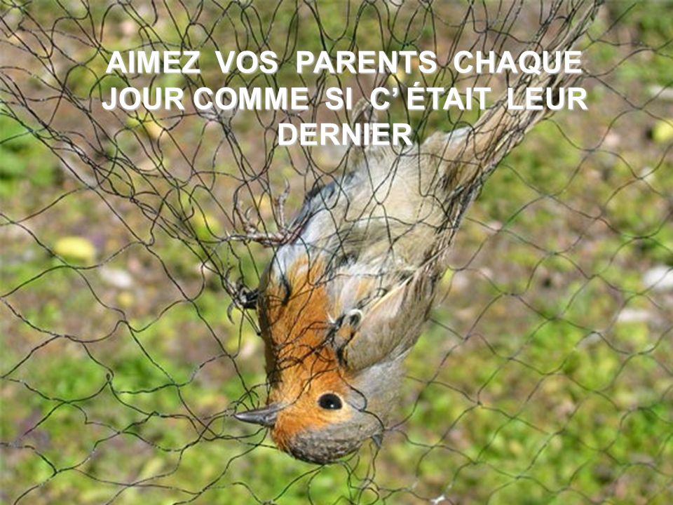 AIMEZ VOS PARENTS CHAQUE JOUR COMME SI C' ÉTAIT LEUR DERNIER