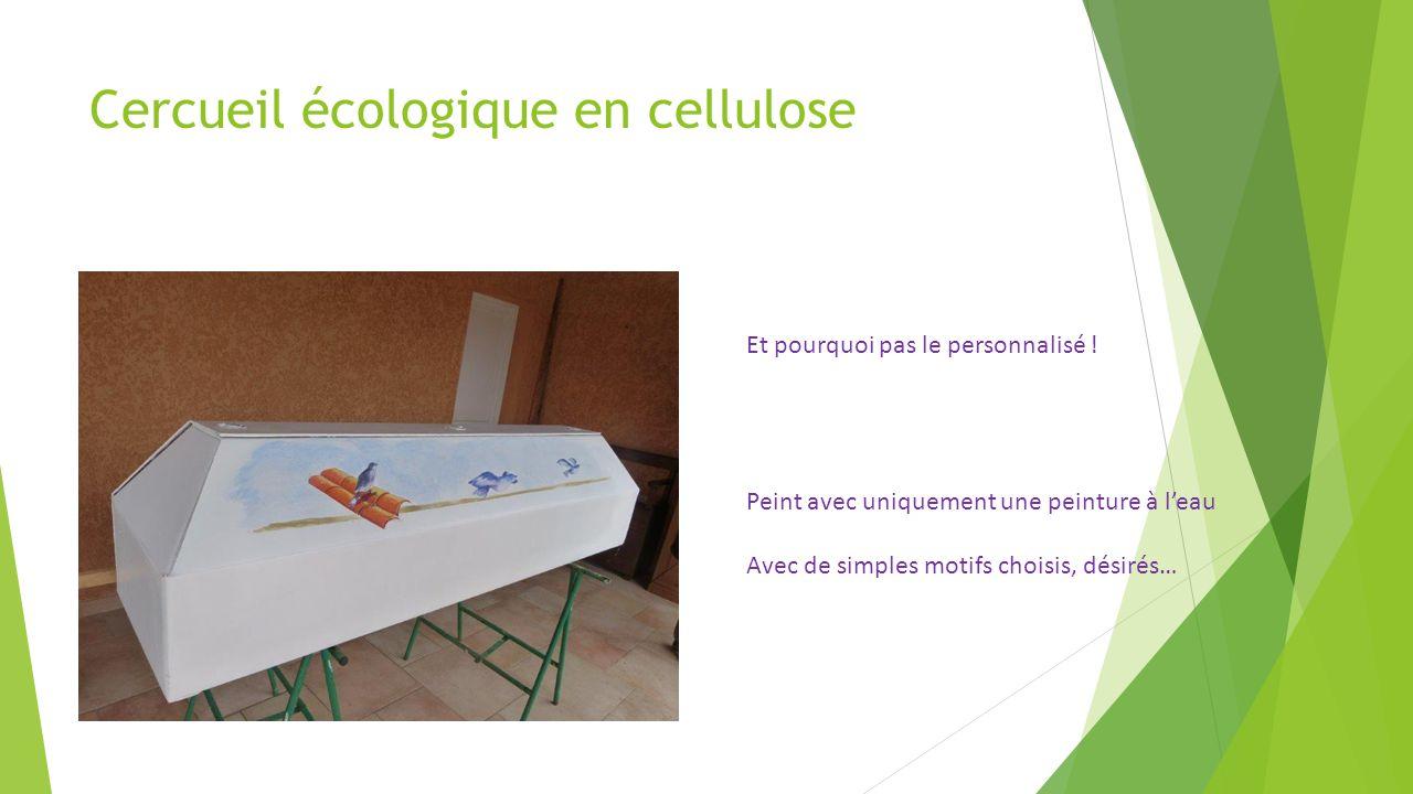 Cercueil écologique en cellulose
