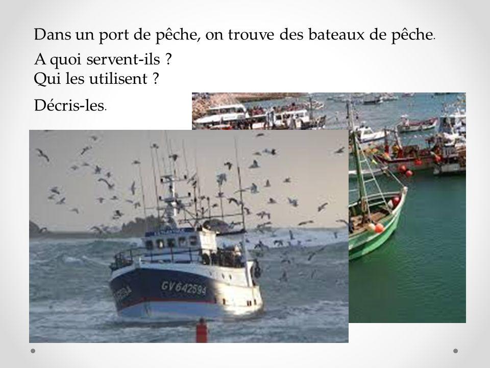 Dans un port de pêche, on trouve des bateaux de pêche.