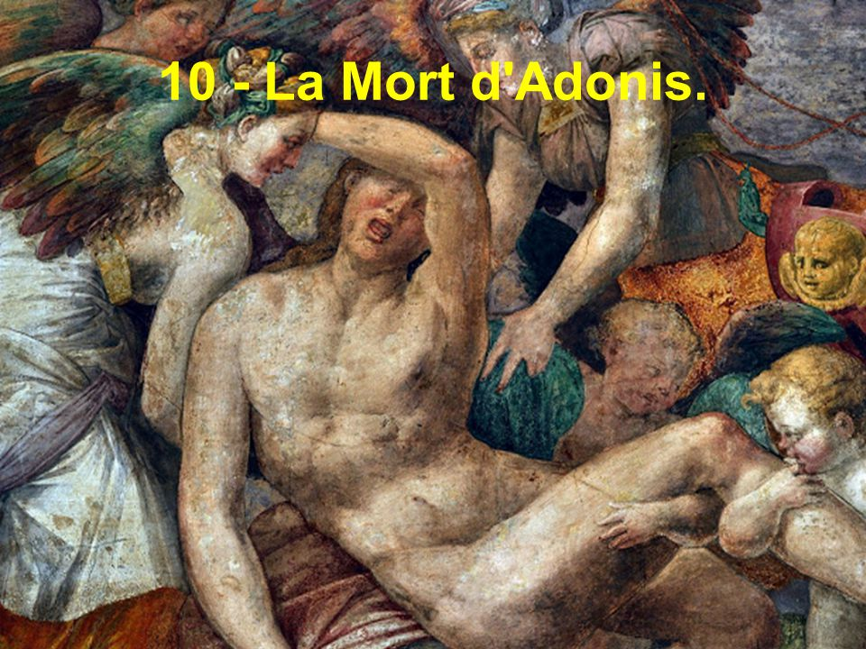 10 - La Mort d Adonis.