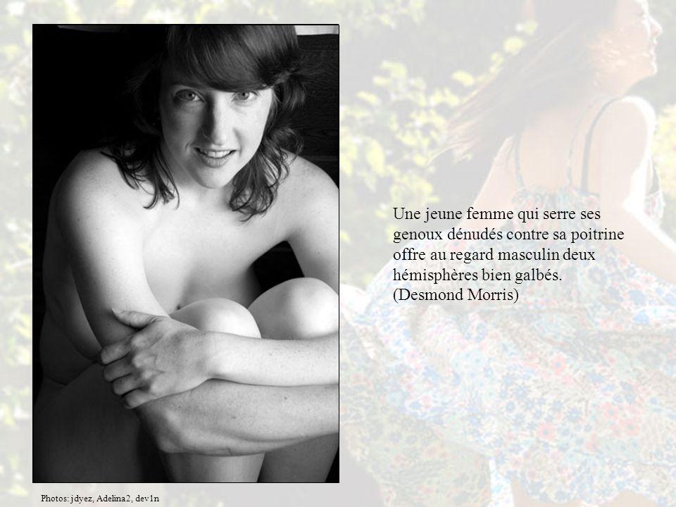 Une jeune femme qui serre ses genoux dénudés contre sa poitrine offre au regard masculin deux hémisphères bien galbés. (Desmond Morris)