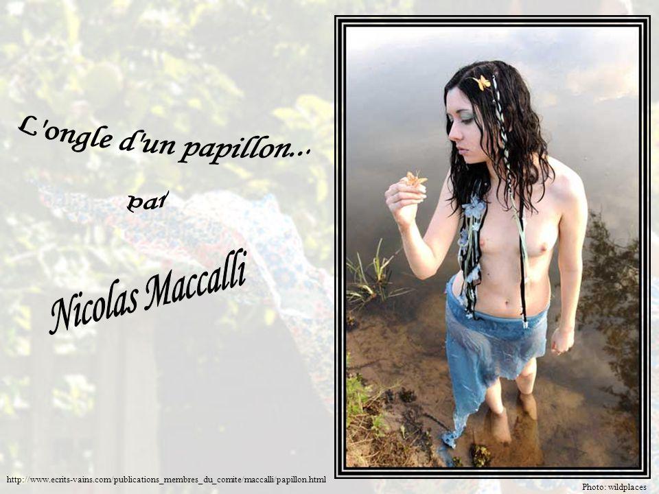 L ongle d un papillon... Nicolas Maccalli par