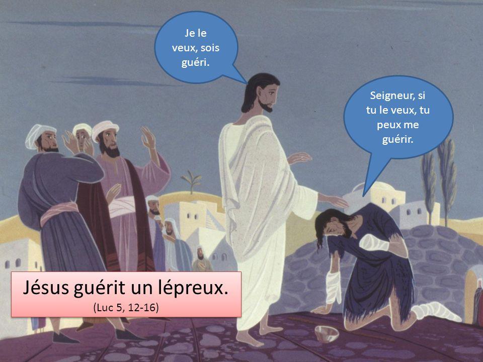 Jésus guérit un lépreux.