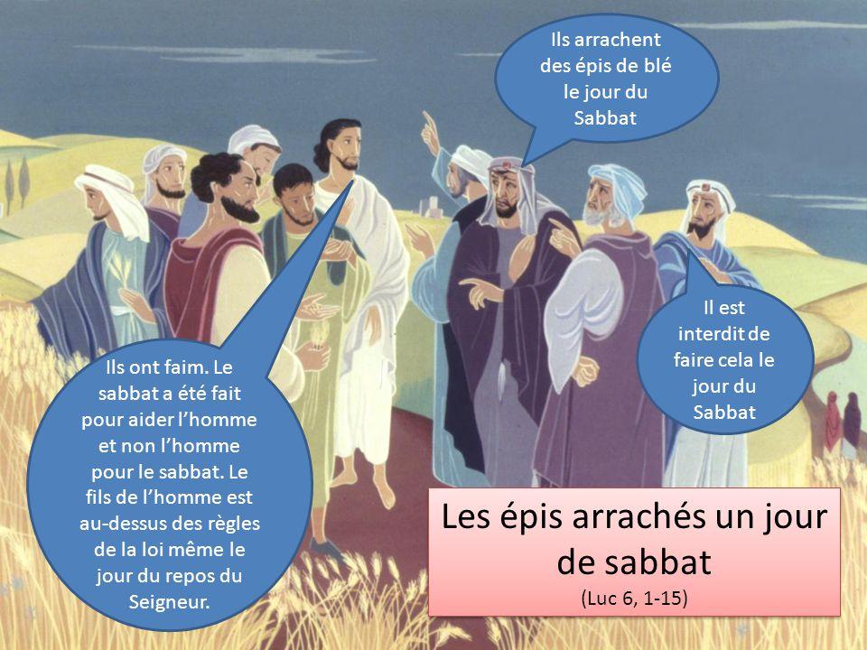 Les épis arrachés un jour de sabbat