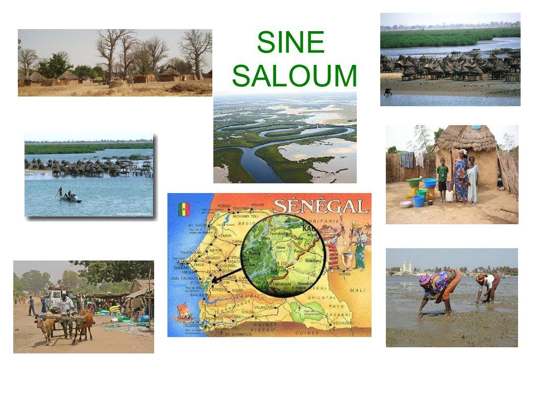 SINE SALOUM