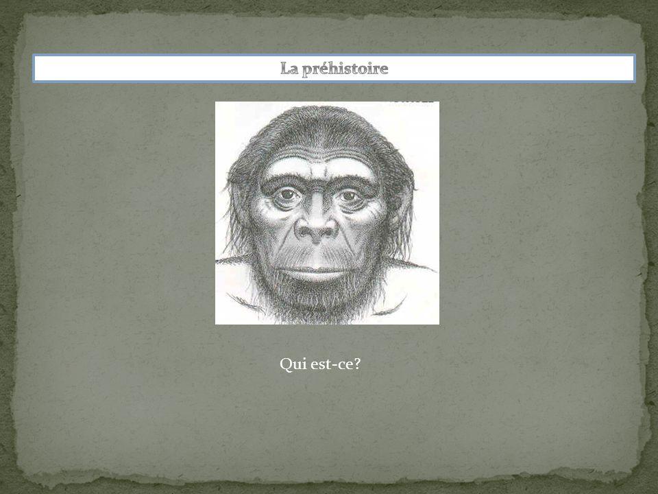 La préhistoire Qui est-ce