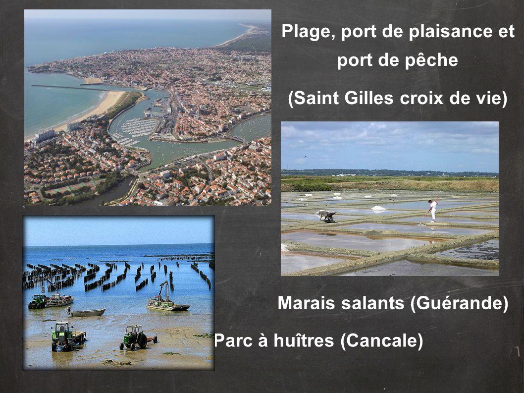 Plage, port de plaisance et port de pêche