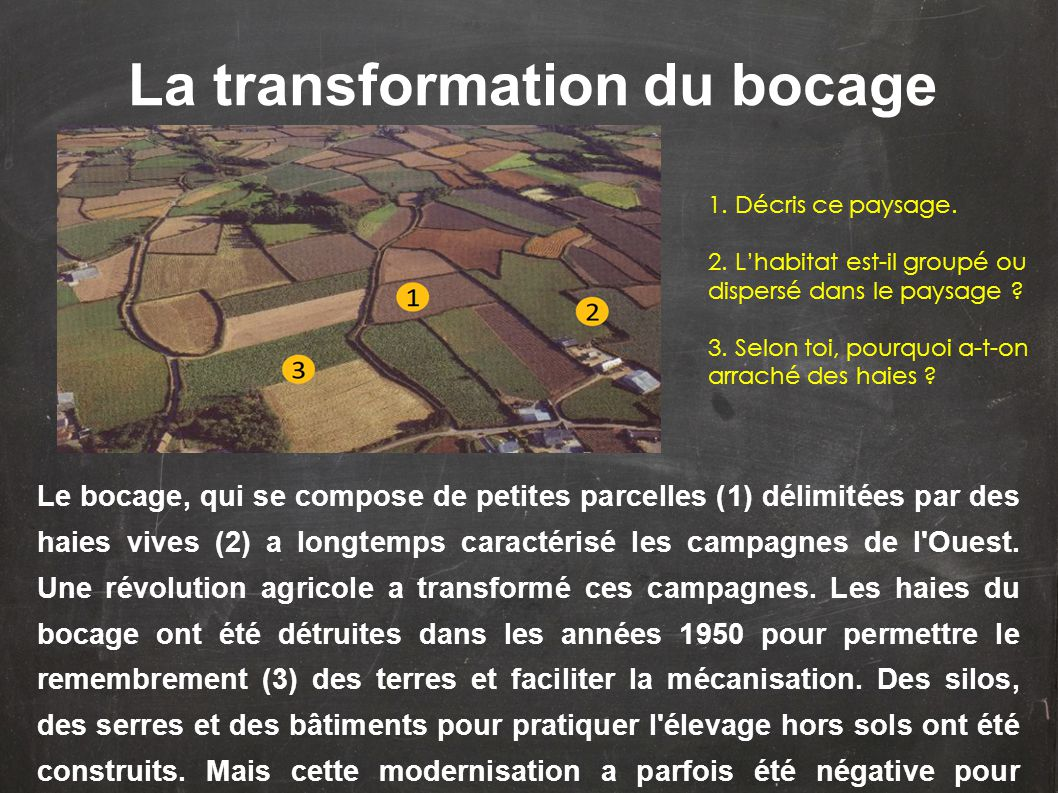 La transformation du bocage
