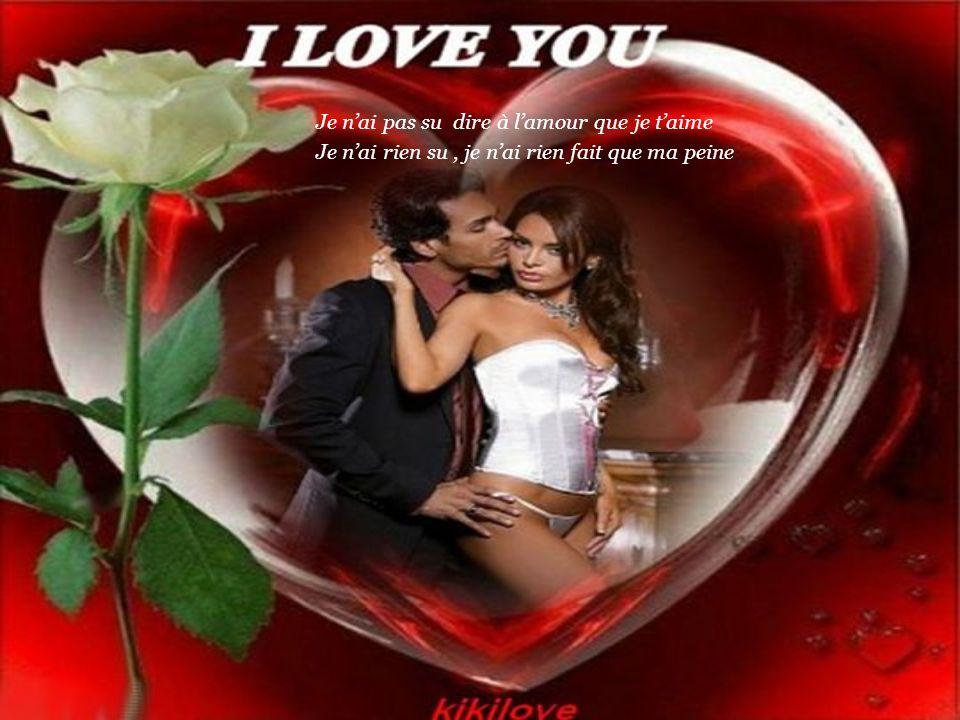 Je n'ai pas su dire à l'amour que je t'aime