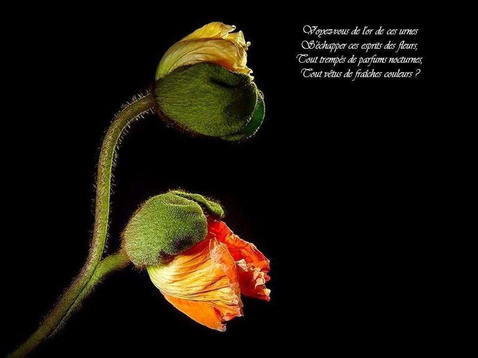 Voyez-vous de l or de ces urnes S échapper ces esprits des fleurs,