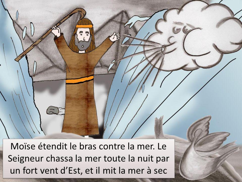 Moïse étendit le bras contre la mer