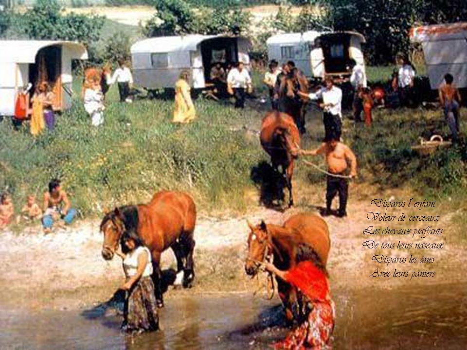 Disparus l´enfant Voleur de cerceaux. Les chevaux piaffants. De tous leurs naseaux. Disparus les ânes.