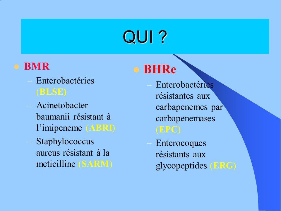 QUI BHRe BMR Enterobactéries (BLSE)