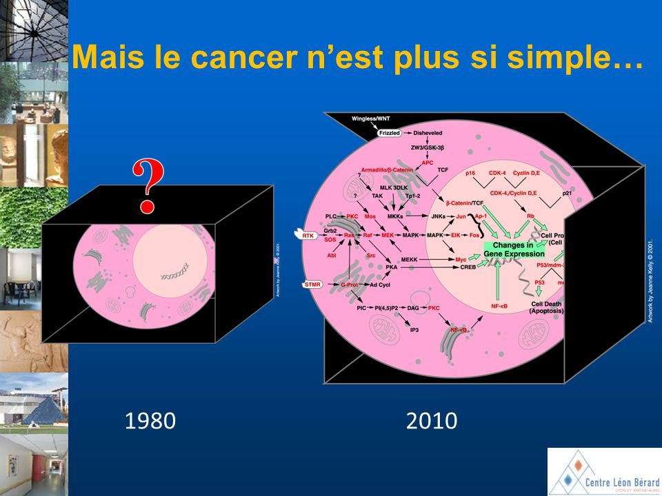 Mais le cancer n'est plus si simple…