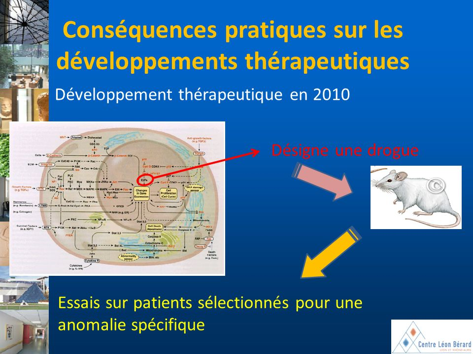 Conséquences pratiques sur les développements thérapeutiques