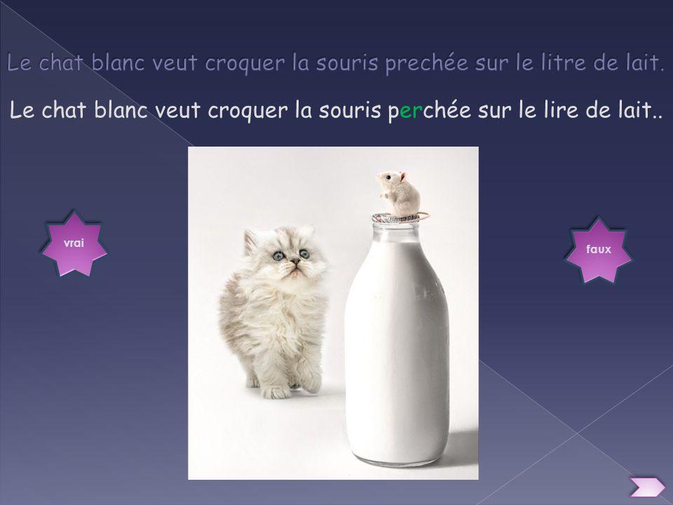 Le chat blanc veut croquer la souris prechée sur le litre de lait.