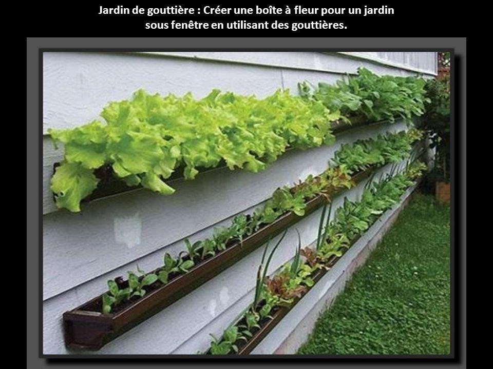 Jardin de gouttière : Créer une boîte à fleur pour un jardin