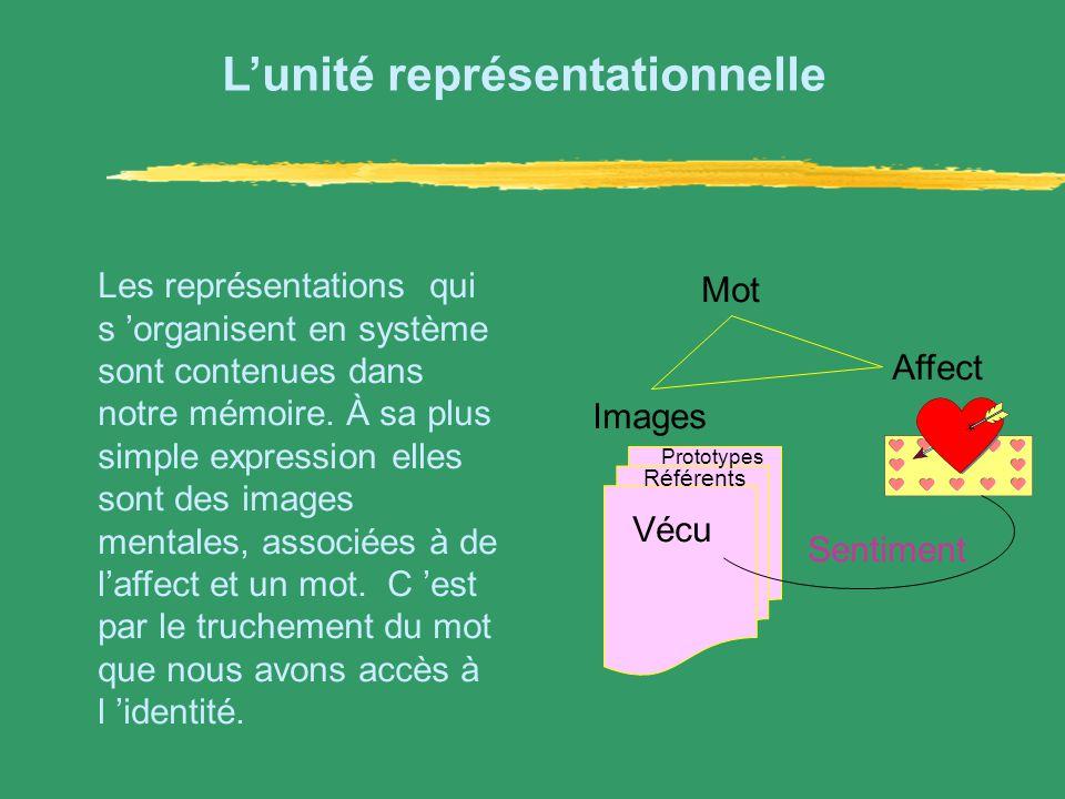 L'unité représentationnelle