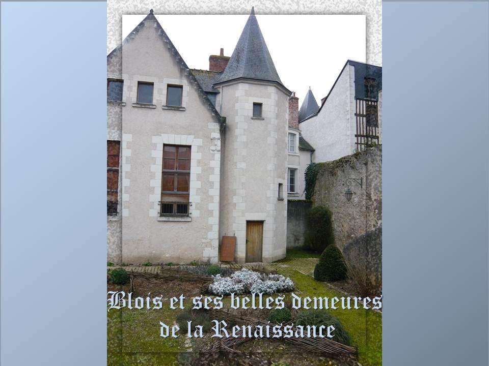Blois et ses belles demeures