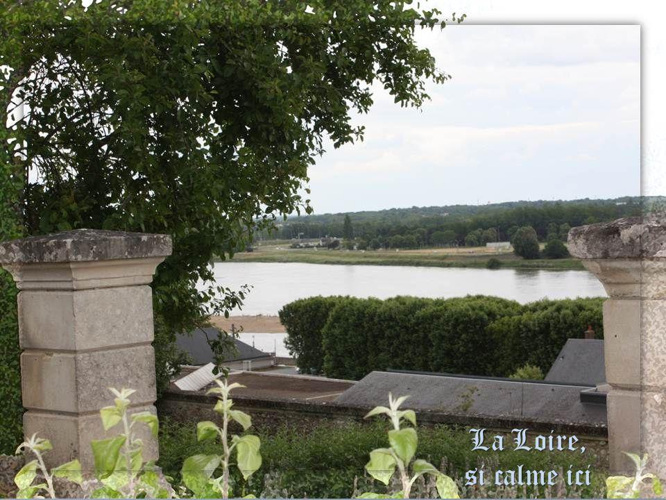 La Loire, si calme ici