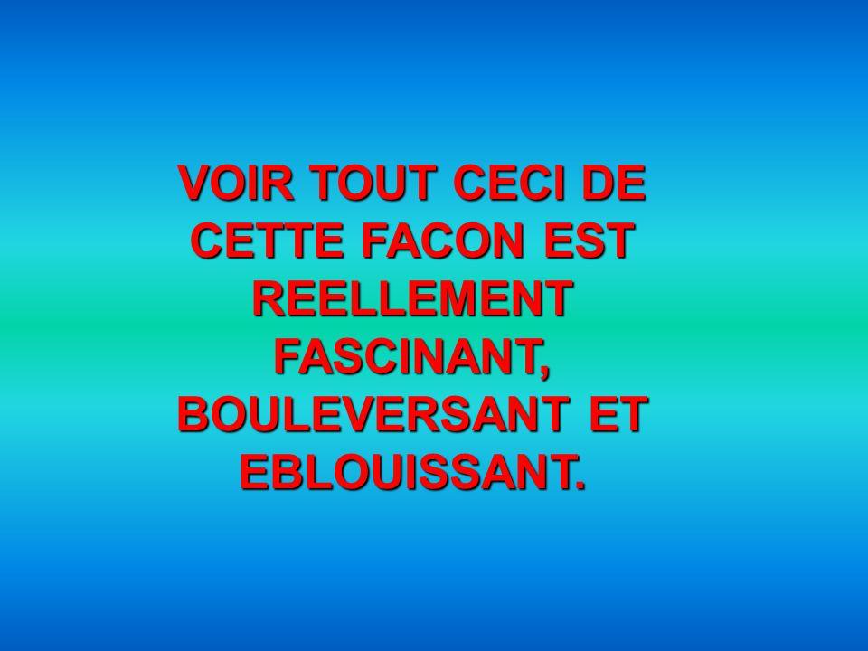 VOIR TOUT CECI DE CETTE FACON EST REELLEMENT FASCINANT, BOULEVERSANT ET EBLOUISSANT.