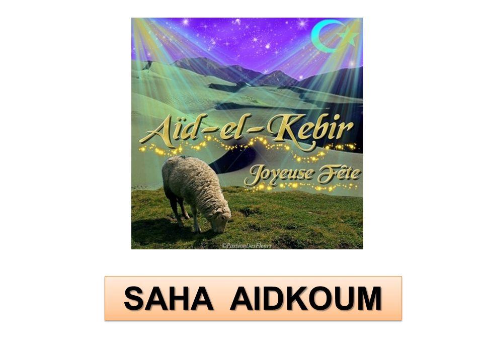SAHA AIDKOUM