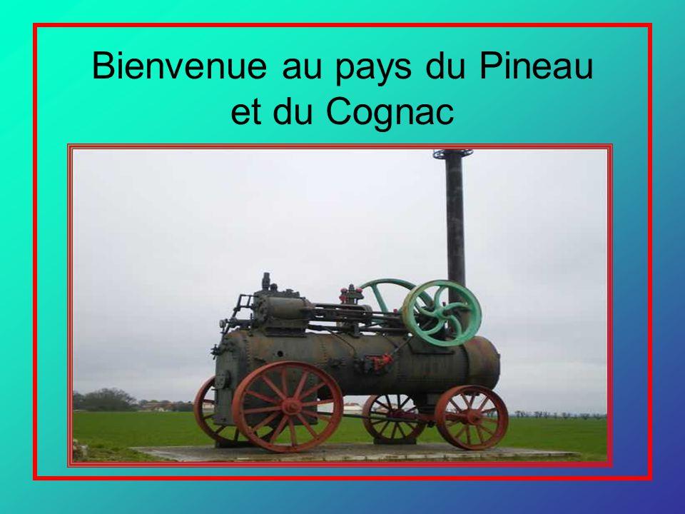 Bienvenue au pays du Pineau et du Cognac