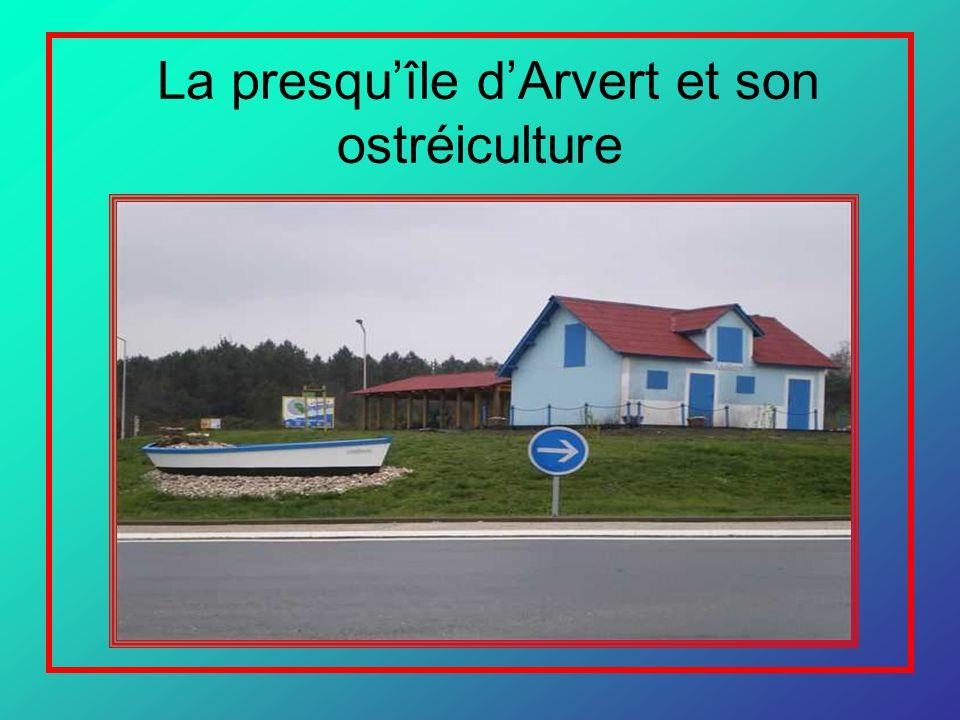 La presqu'île d'Arvert et son ostréiculture