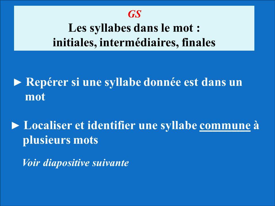 Les syllabes dans le mot : initiales, intermédiaires, finales