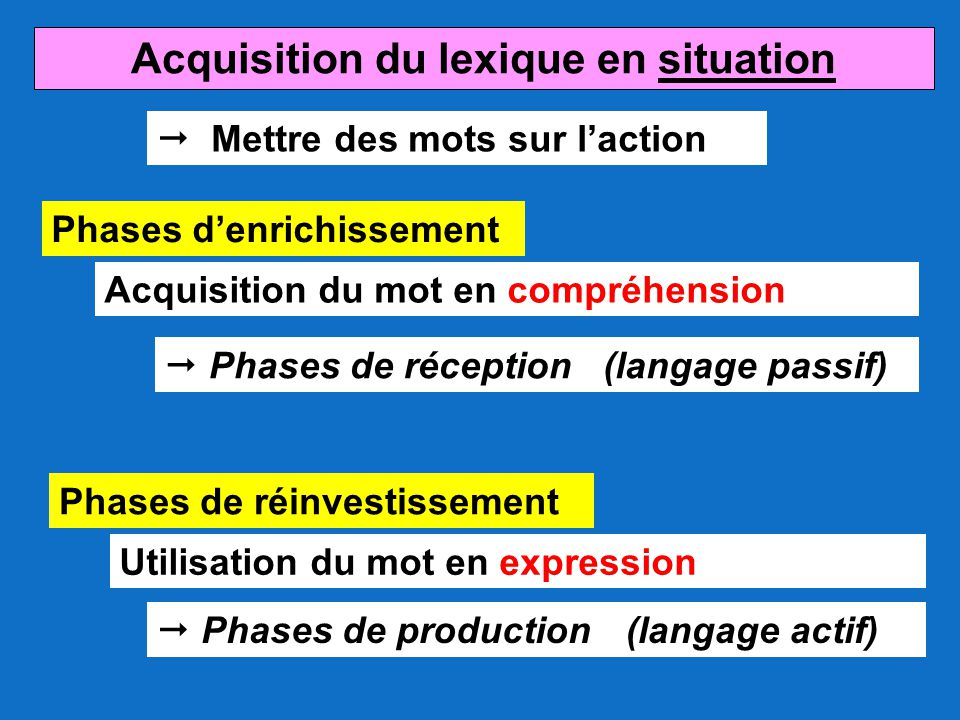 Acquisition du lexique en situation