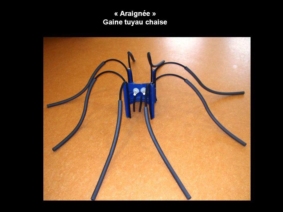 « Araignée » Gaine tuyau chaise