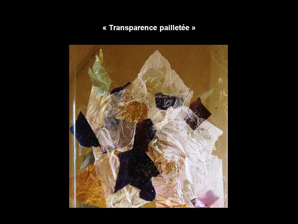 « Transparence pailletée »
