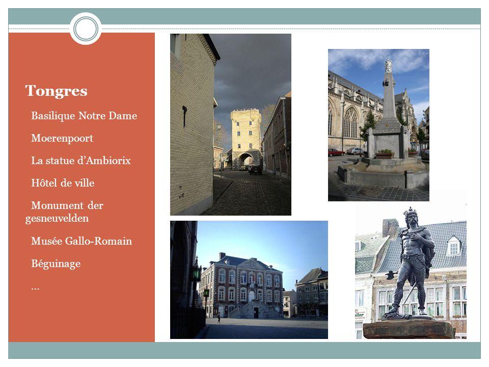 Tongres Basilique Notre Dame Moerenpoort La statue d'Ambiorix
