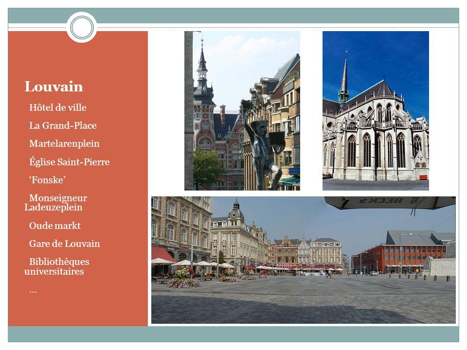 Louvain Hôtel de ville La Grand-Place Martelarenplein