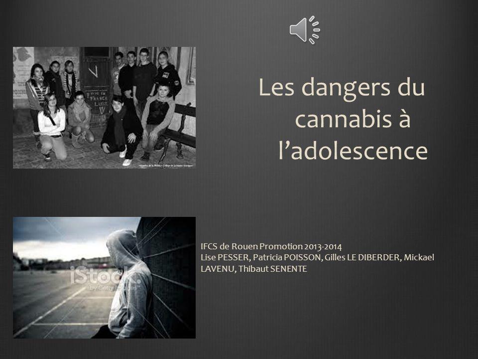 Les dangers du cannabis à