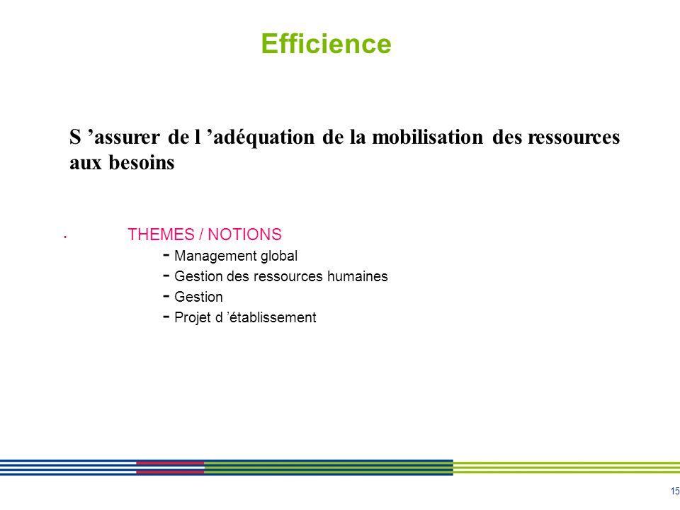 Efficience S 'assurer de l 'adéquation de la mobilisation des ressources aux besoins. THEMES / NOTIONS.