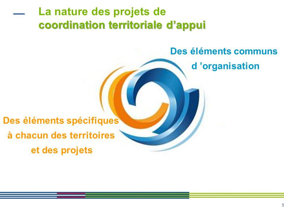 La nature des projets de coordination territoriale d'appui