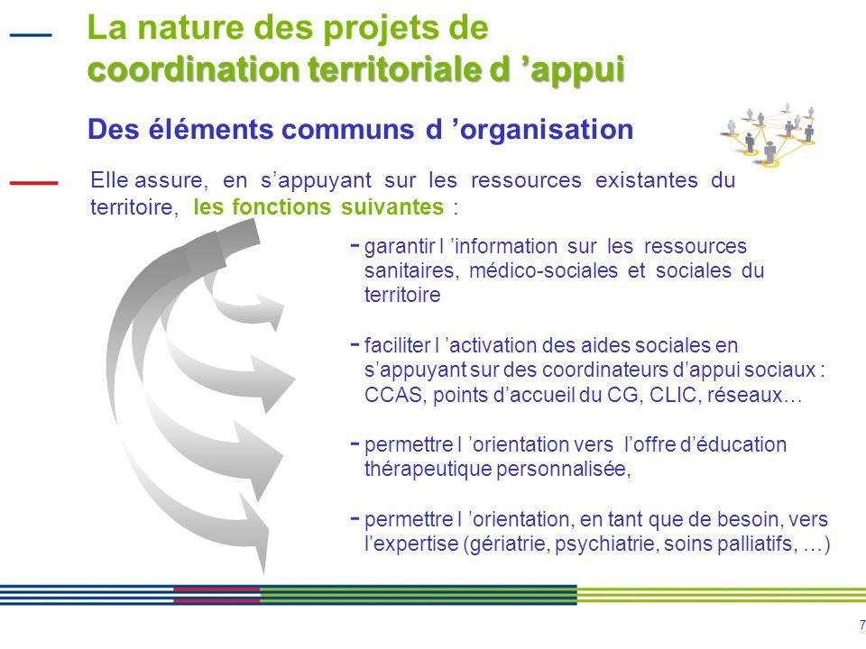La nature des projets de coordination territoriale d 'appui