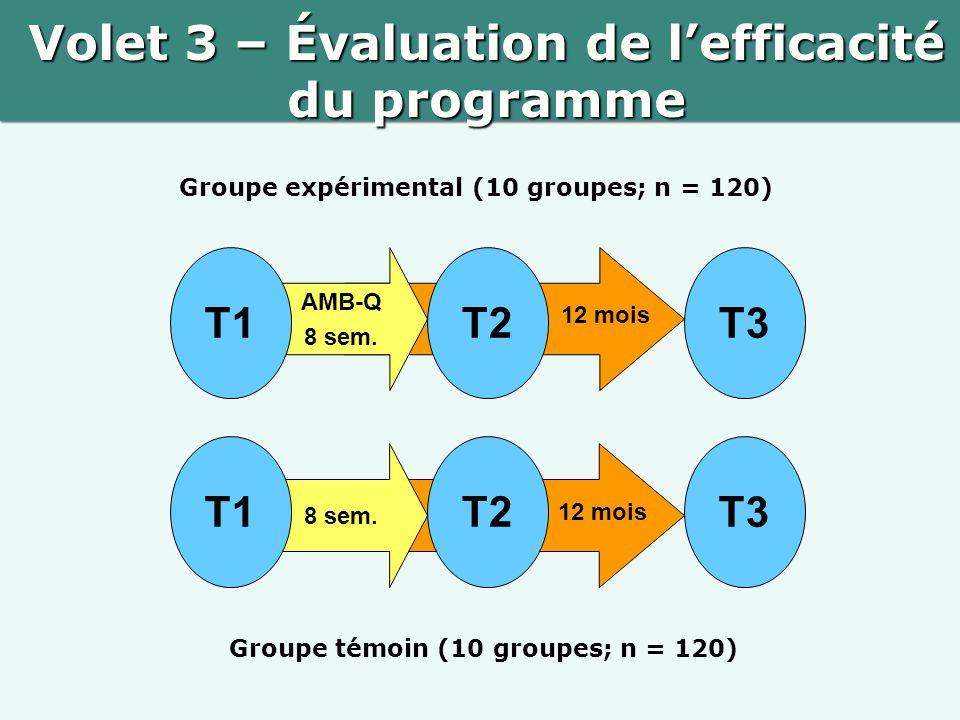Volet 3 – Évaluation de l'efficacité du programme