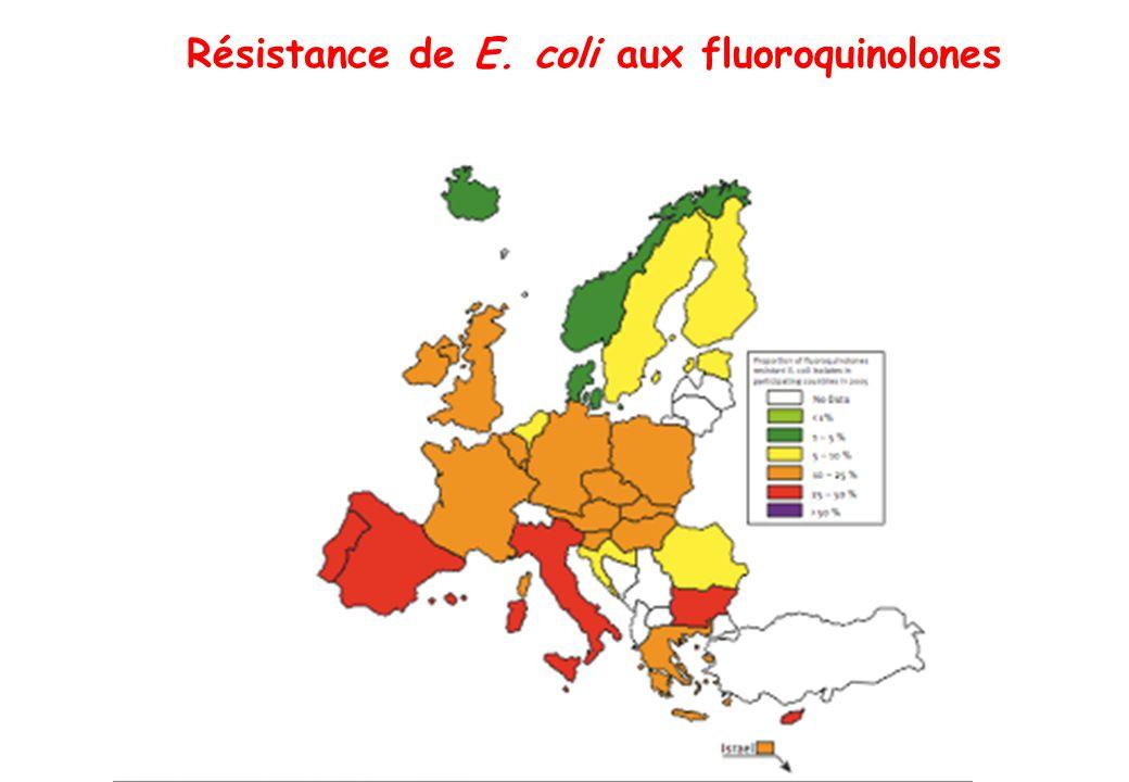 Résistance de E. coli aux fluoroquinolones