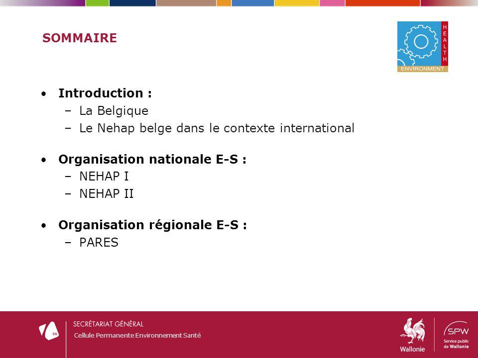 Sommaire Introduction : La Belgique. Le Nehap belge dans le contexte international. Organisation nationale E-S :